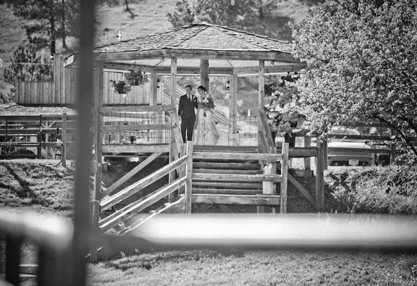 Besler's Cadillac Ranch Vendor Photo